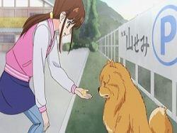 Aru Hi Inu no Kuni kara Tegami ga Kite OVA VOSTFR